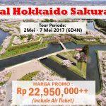 special Hokkaido tour sakura