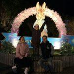azalea_170519_0018