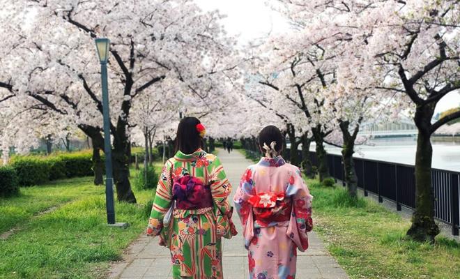 All Article Liburan Ke Jepang