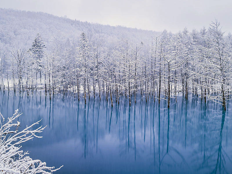 Frozen Blue pond Biei 4