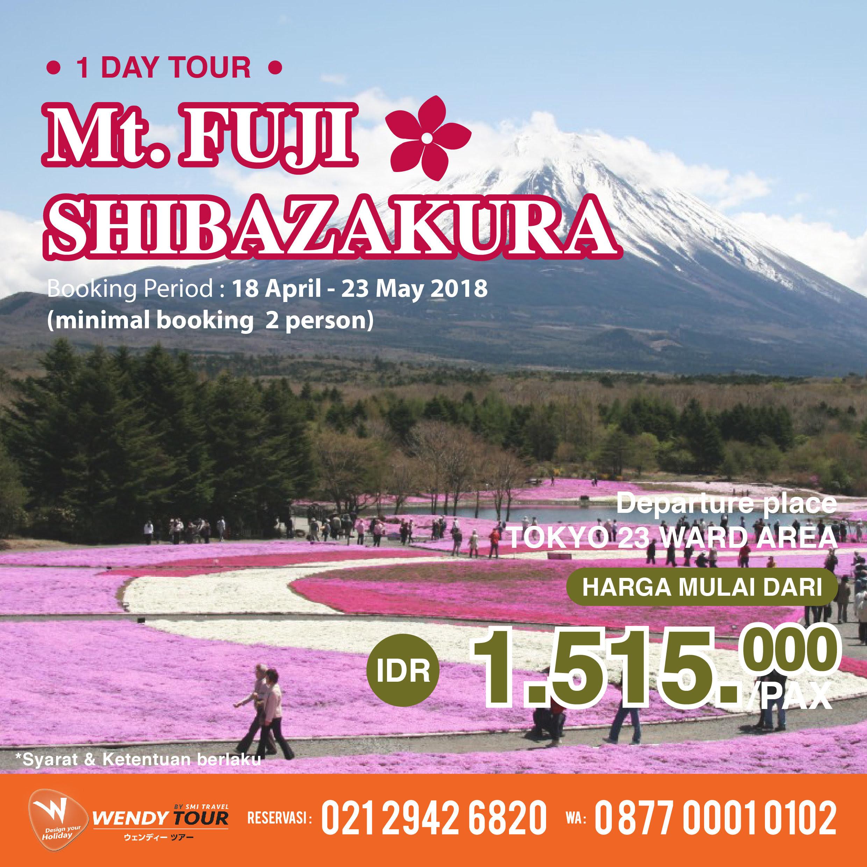 Mt. fuji Shibasakura