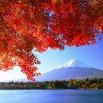 kawaguchiko-autumn