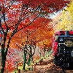 sagano-train-autumn-