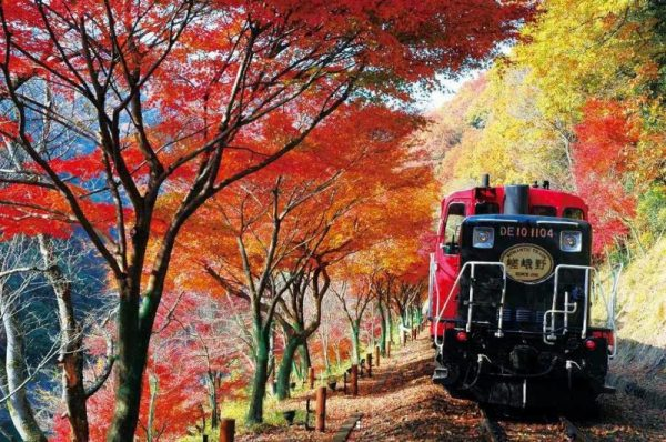 sagano-train-autumn-e1485856337992