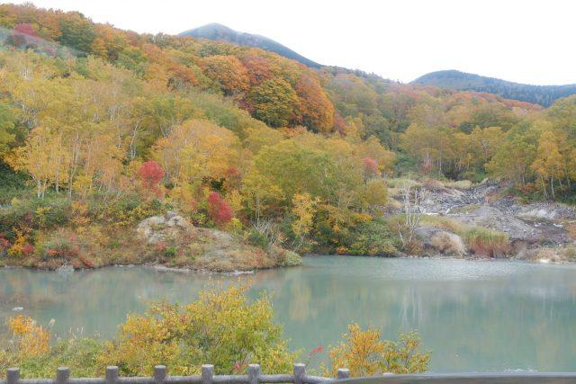 Salah satu pemandangan alam yang bisa di Nikmati selama perjalanan