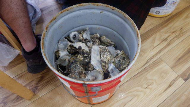 Di sediakan ember besar di bawah meja, untuk buang cangkang Oyster nya.