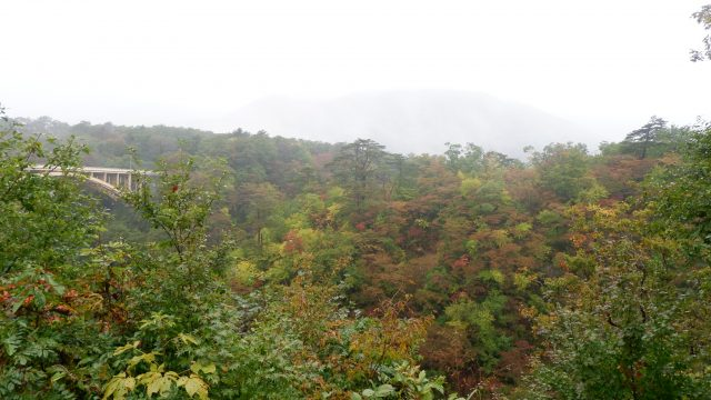 Apalagi kalau pas peak autumn :)