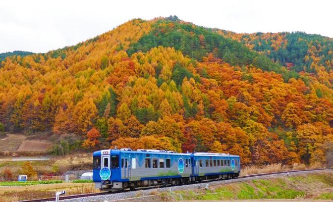 joyful train3