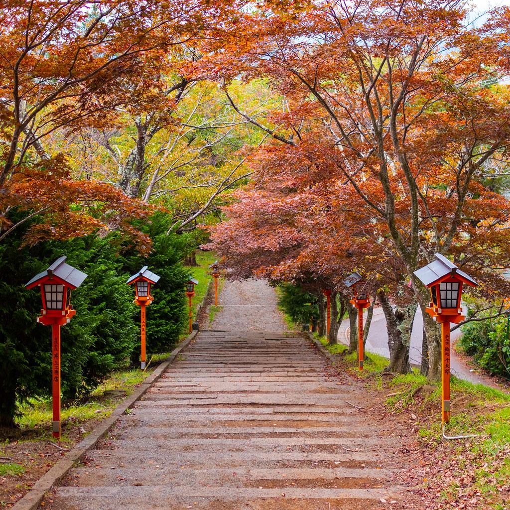 Tsukimi Tradisi Di Jepang Saat Musim Gugur Liburan Ke Jepang